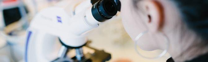 La science démontre l'existence des méridiens énergétiques